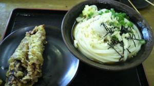 Ichigo0000560
