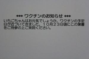 Ichigo0000613