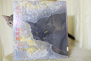 Yuzu00000013